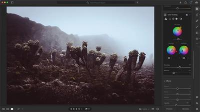 Adobe Max 2020 Lightroom