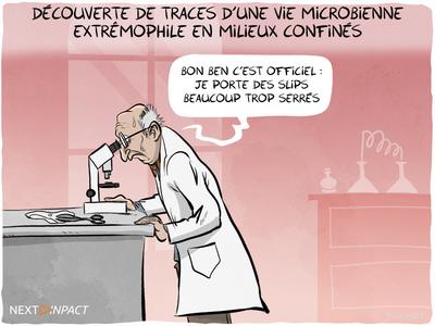 Au Maroc, des traces « d'une vie microbienne extrêmophile en milieux confinés »
