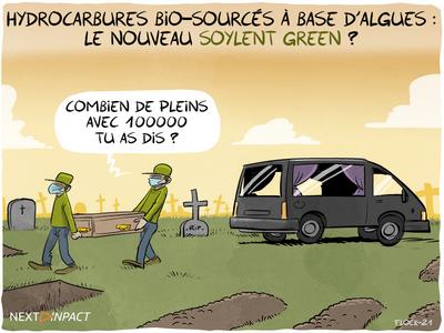 Des chercheurs font un pas vers la « production industrielle d'hydrocarbures biosourcés »